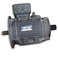 electric hoist motor